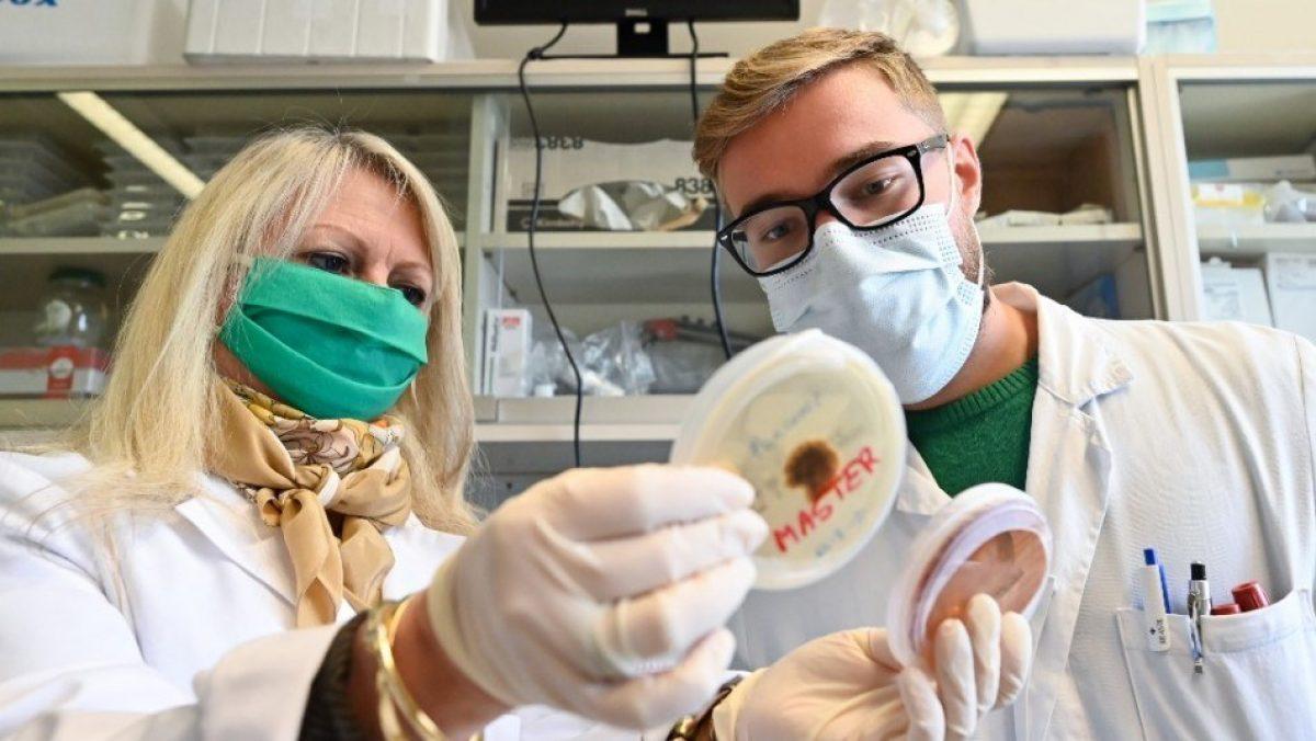 Científicos confirman transmisión humana de nuevo virus detectado en Bolivia