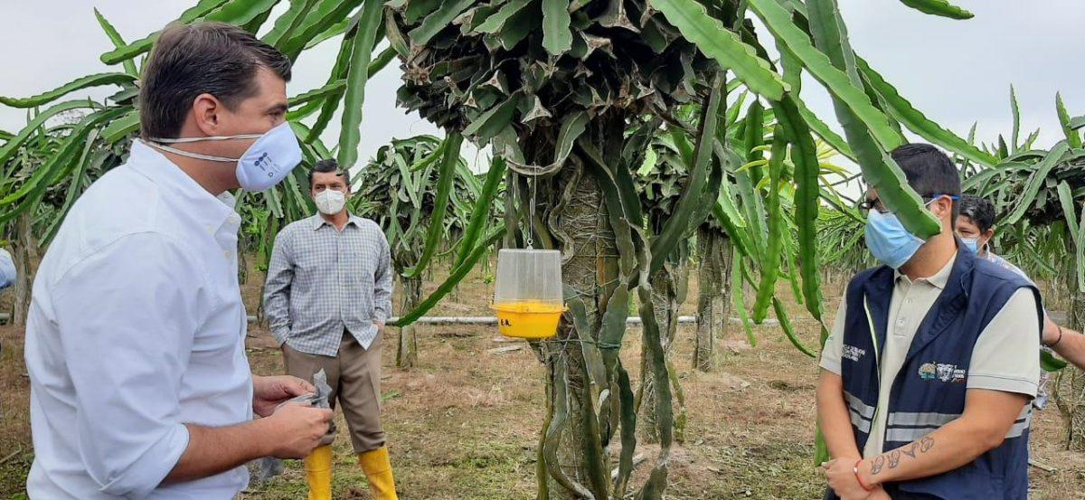 El Ministerio de Agricultura y Ganadería apoya el desarrollo del agro en Cañar