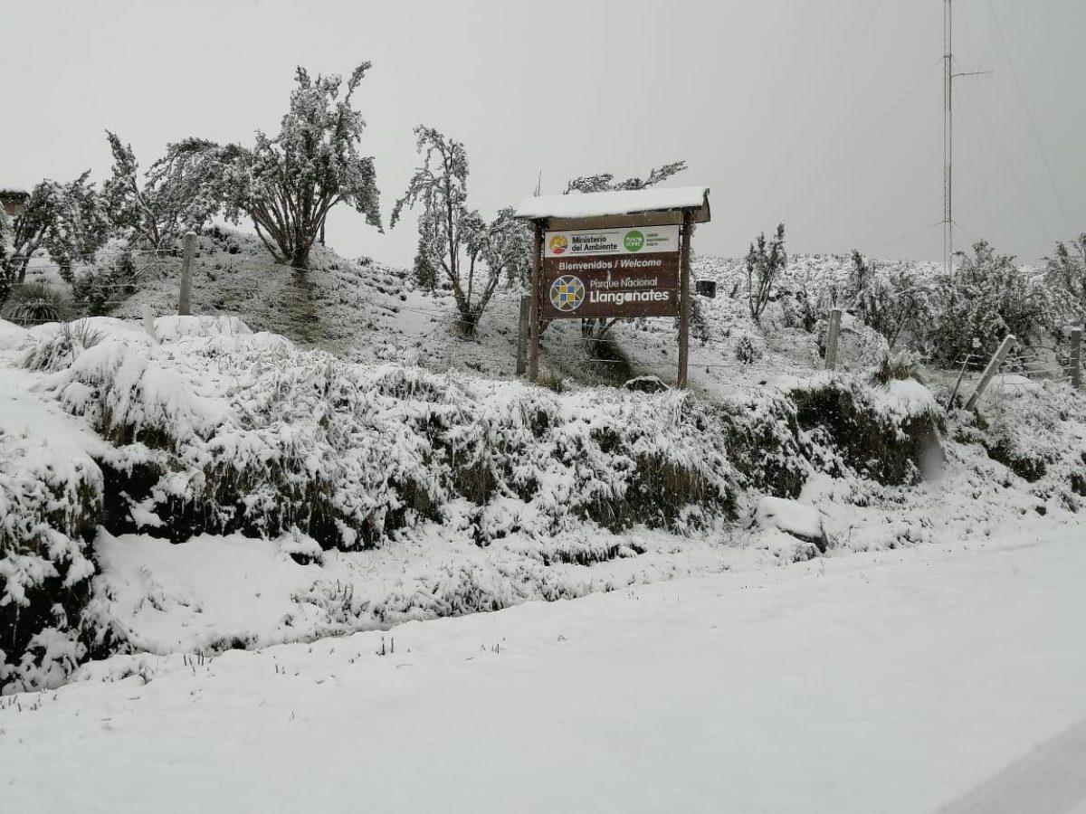VIDEO: El Ministerio de Ambiente realiza un reporte de la caída de nieve en el Parque Nacional Llanganates