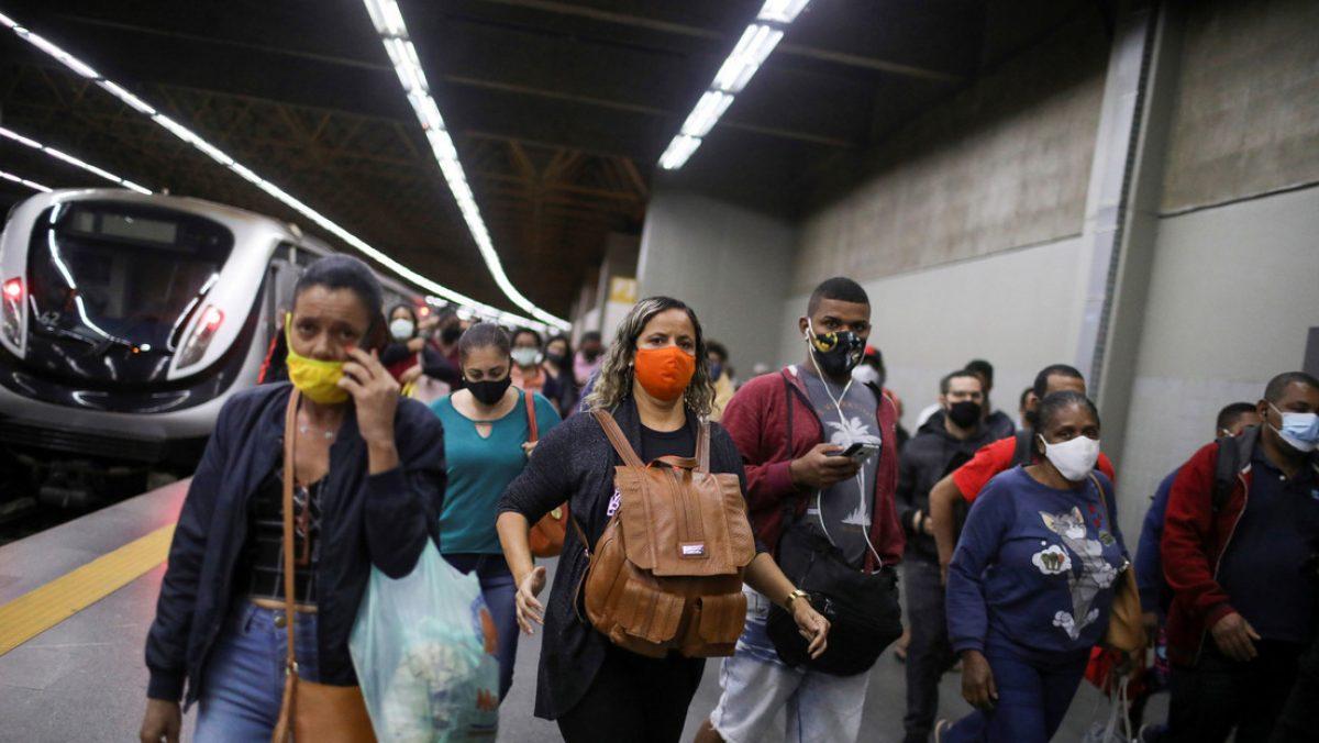 Brasil en alerta por una nueva gripe porcina que se transmite a los humanos