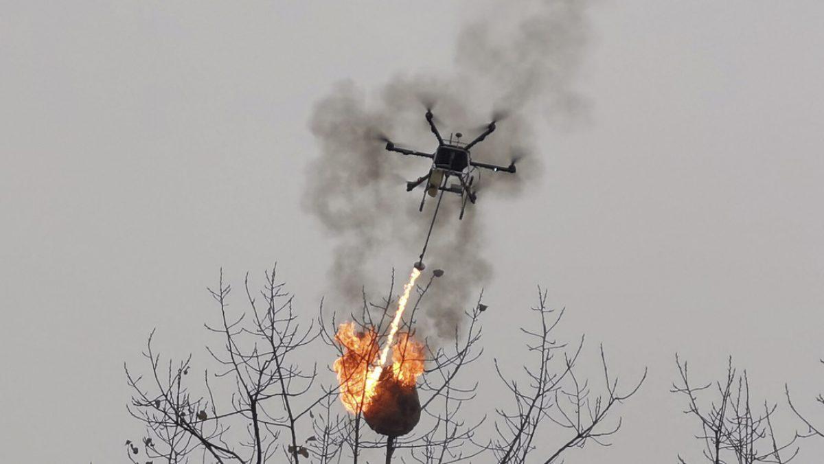 VIDEO   Fabrican un dron lanzallamas para quemar nidos de avispas en China