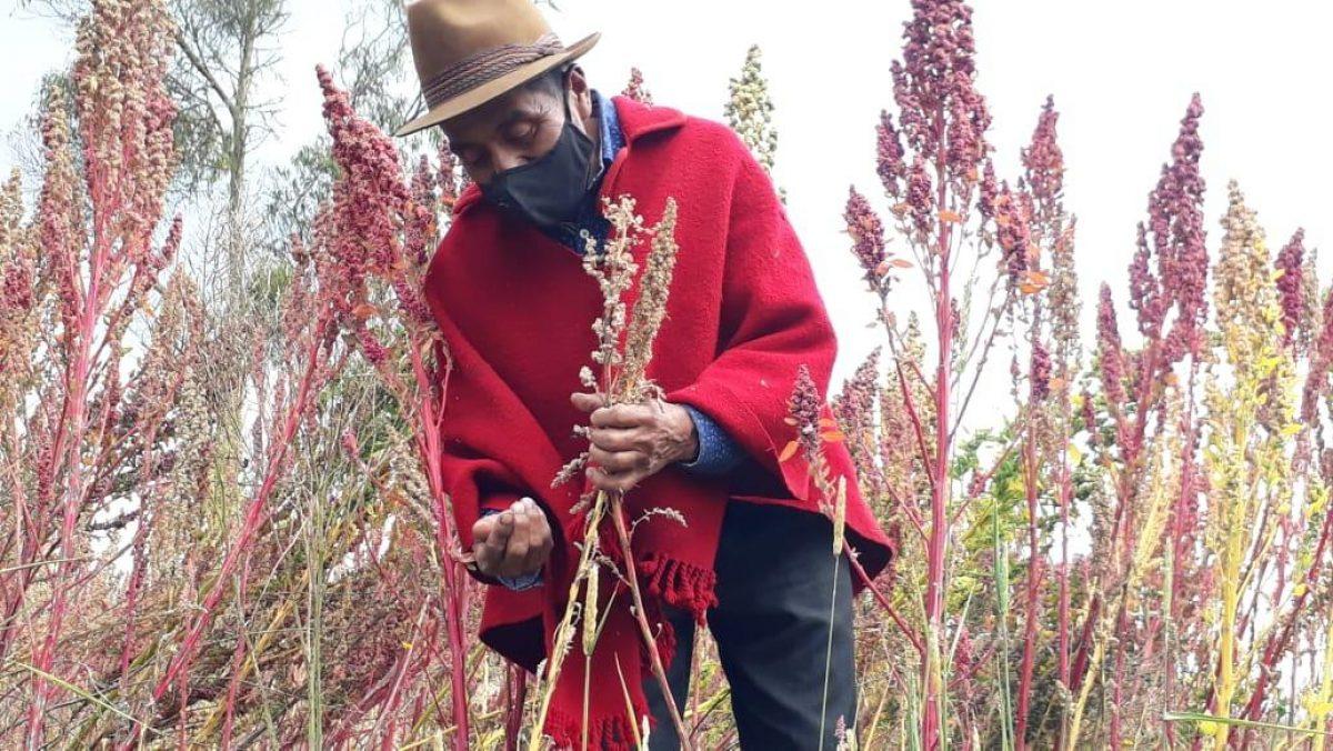 Ministerio de Agricultura y Ganaderia dedica una semana a celebrar el Día Mundial del Suelo
