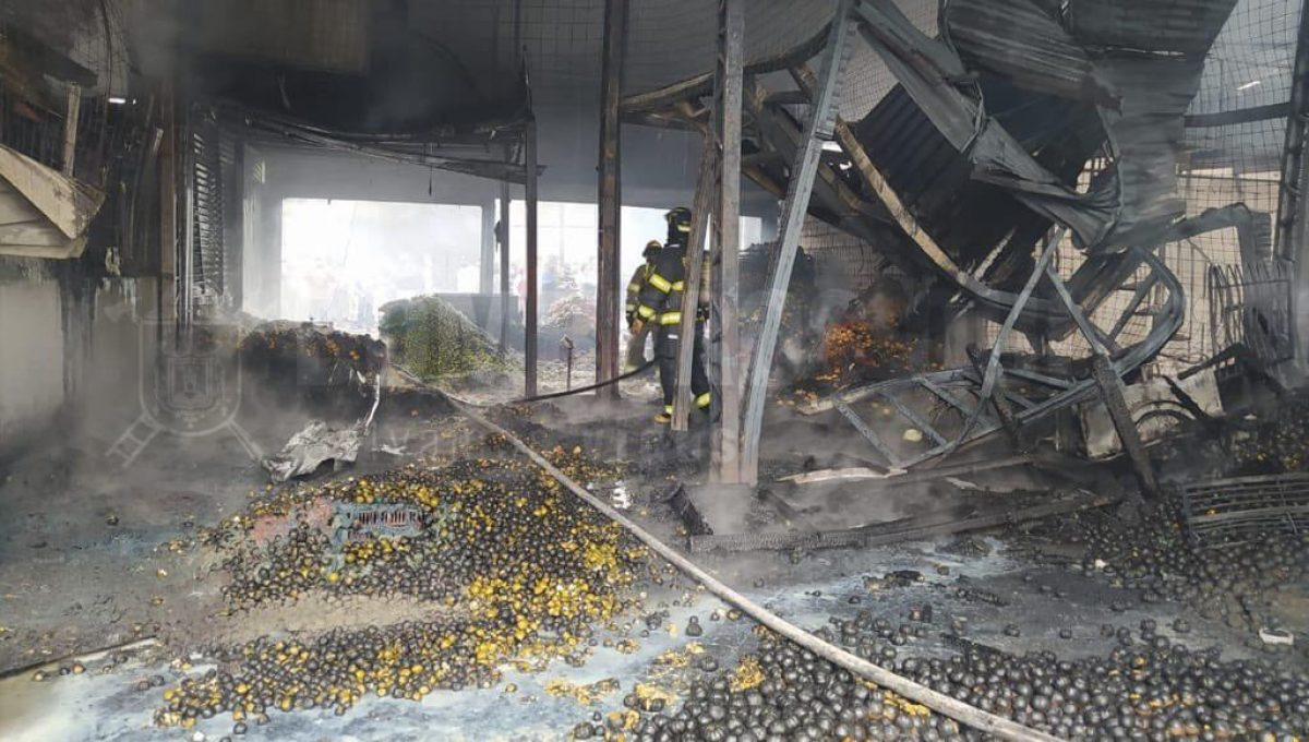VIDEO: 17 galpones afectados por un incendio en el mercado Mayorista de Quito