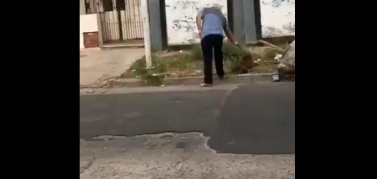 Hombre fue captado matando a un perro callejero con una pistola