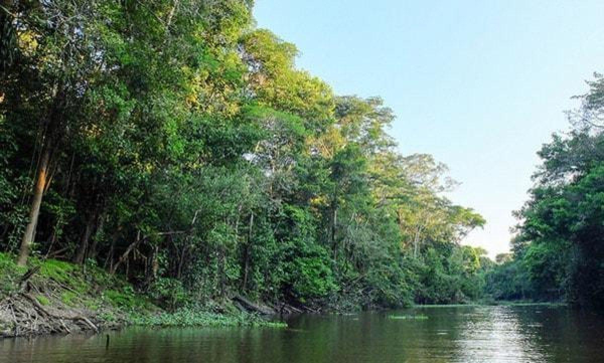 Presunto ataque terrorista deja al menos 18 muertos en la selva central de Perú
