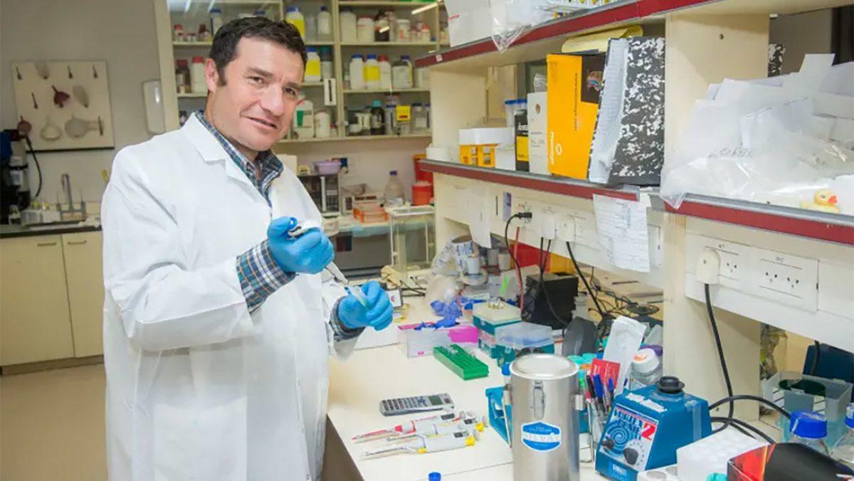 Científicos logran retrasar el envejecimiento en ratones