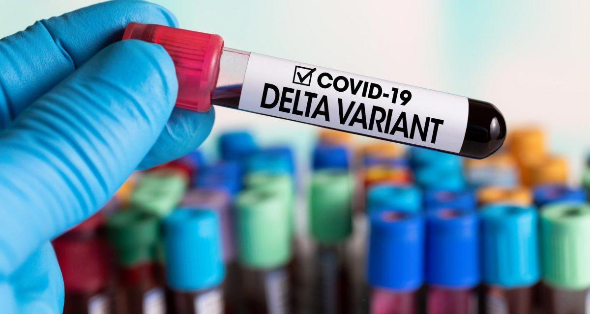 """La variante delta es un """"covid-19 con esteroides"""", según un experto"""