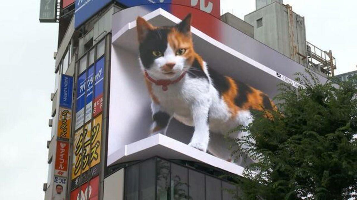 Animación de un gato gigante deslumbra en Japón