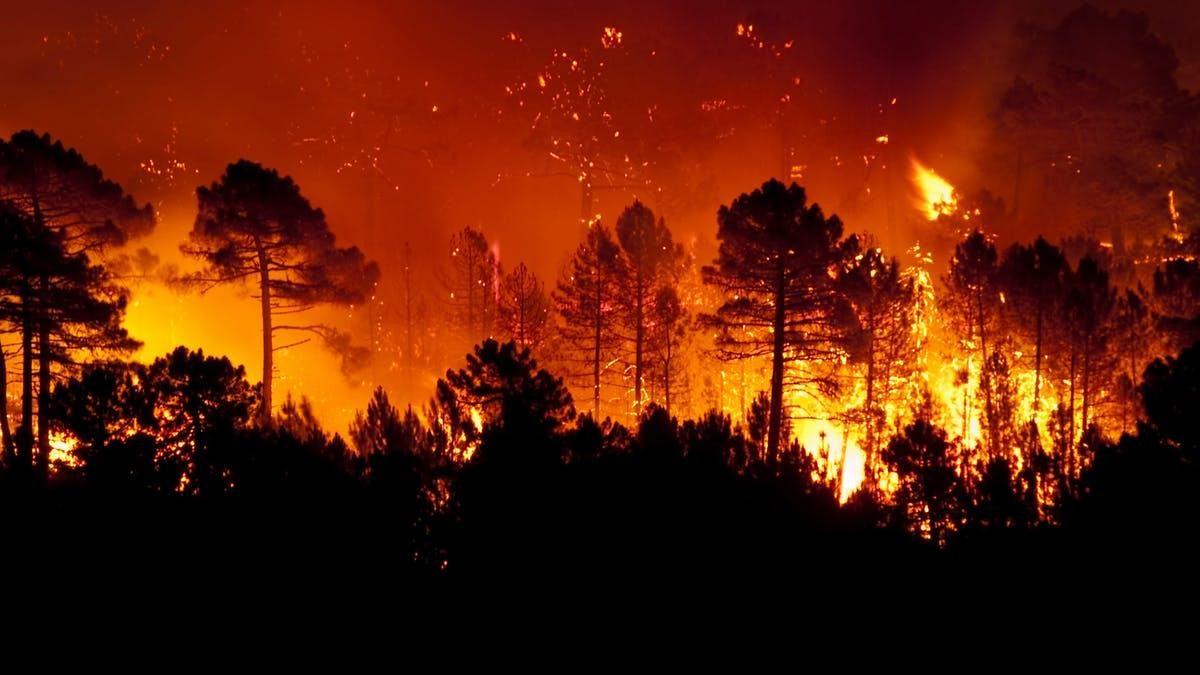 Ocho desaparecidos en enorme incendio forestal de California