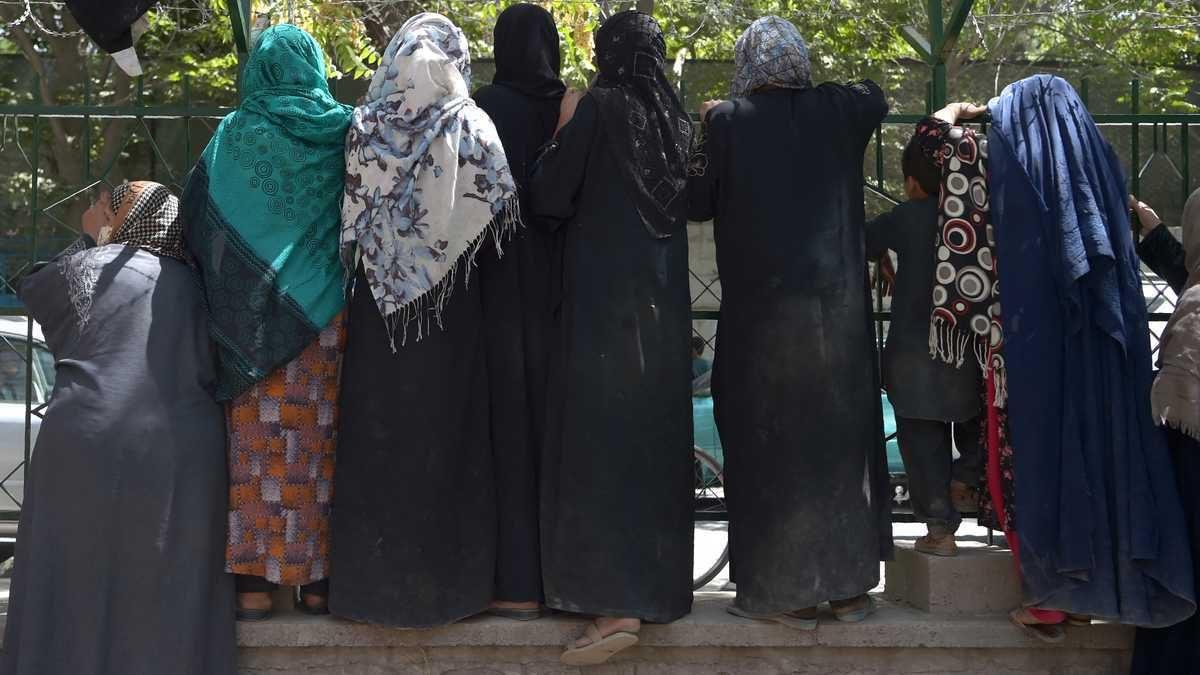 Las mujeres autorizadas por los talibanes a ir a la universidad, pero separadas de los hombres