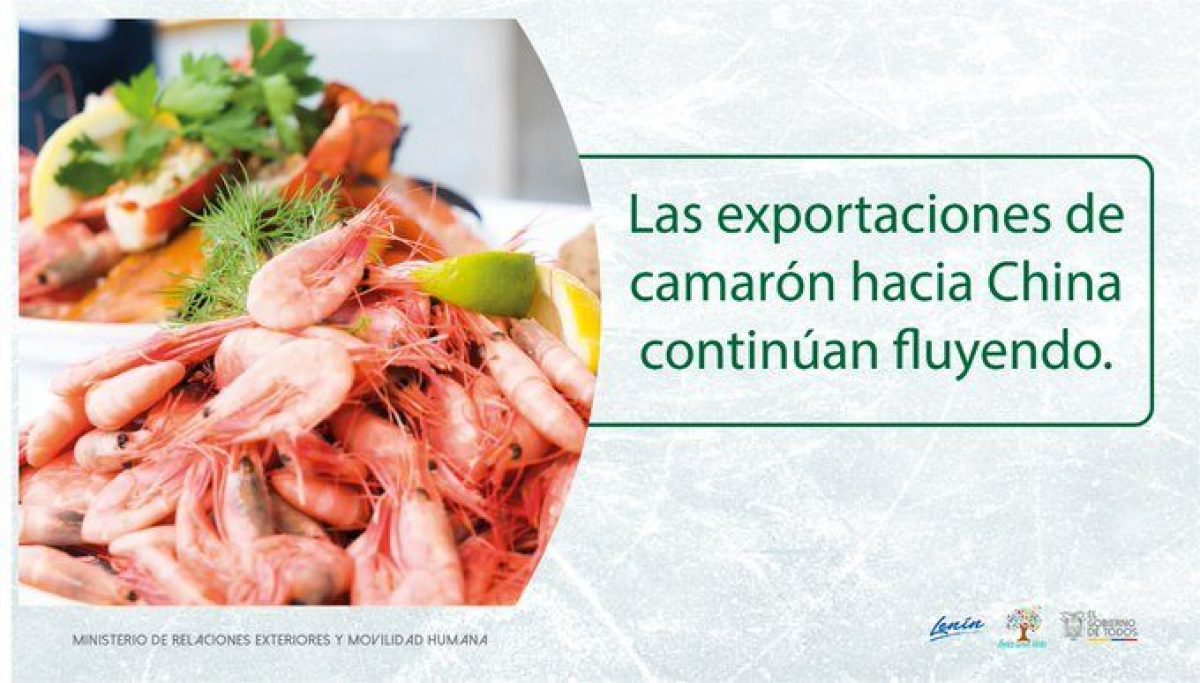 Cancillería del Ecuador anuncia que se levanta sanción para Santa Priscila y las exportaciones de camarón hacia China siguen fluyendo