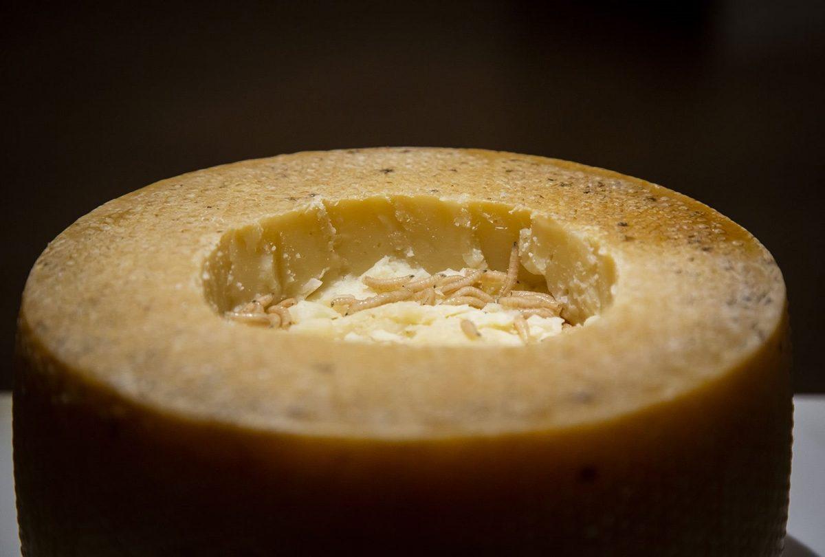 """Esto tiene el queso """"más peligroso"""" del mundo"""