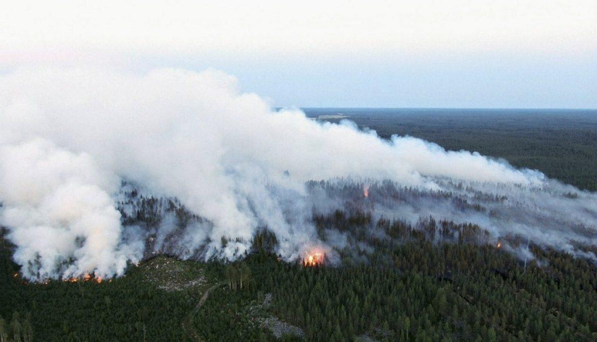 Finlandia sufre su incendio más importante de los últimos 50 años