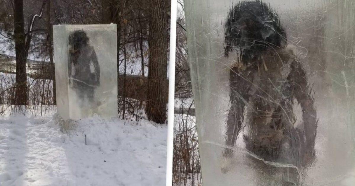 FOTOS | Encuentran un cavernícola dentro un bloque de hielo en Estados Unidos