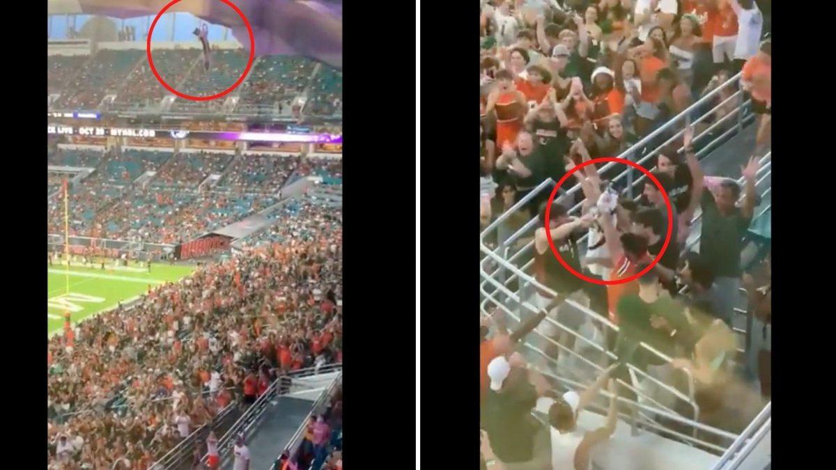 Captan la caída de un gato desde las gradas de un estadio