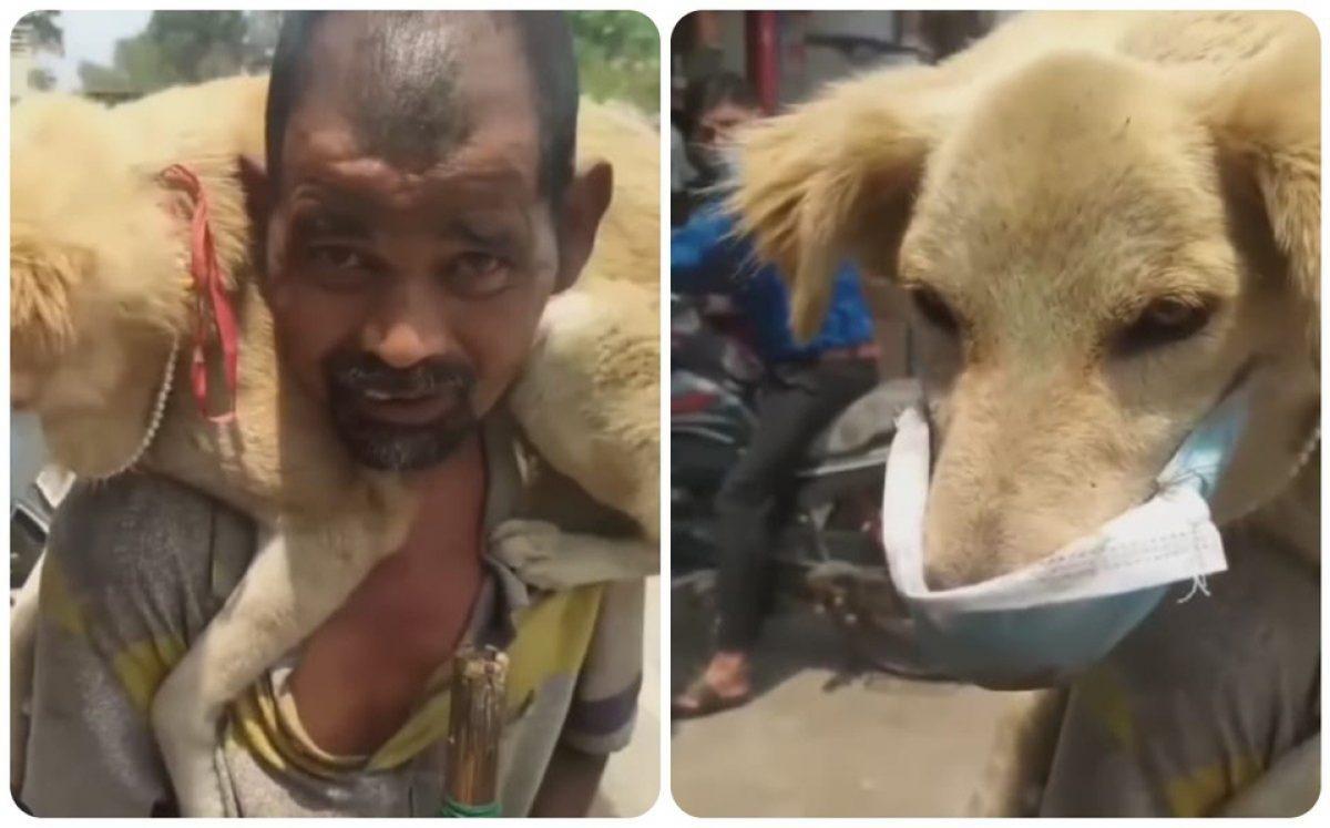 Hombre se quita su última mascarilla y se la pone a su perro