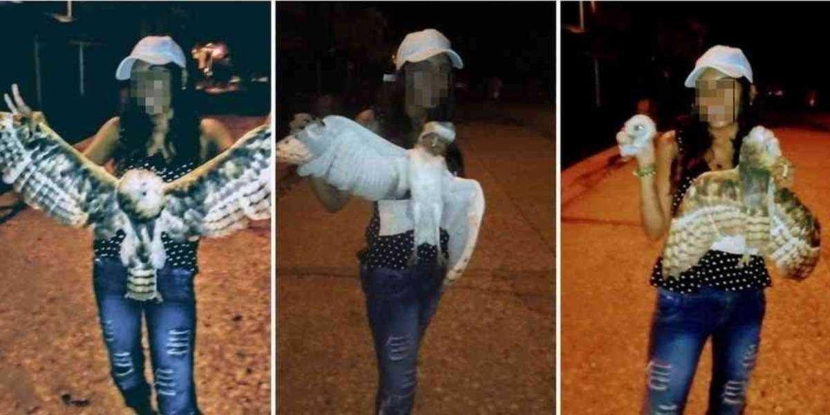 Sicarios mataron a mujer que decapitó a una lechuza en Colombia