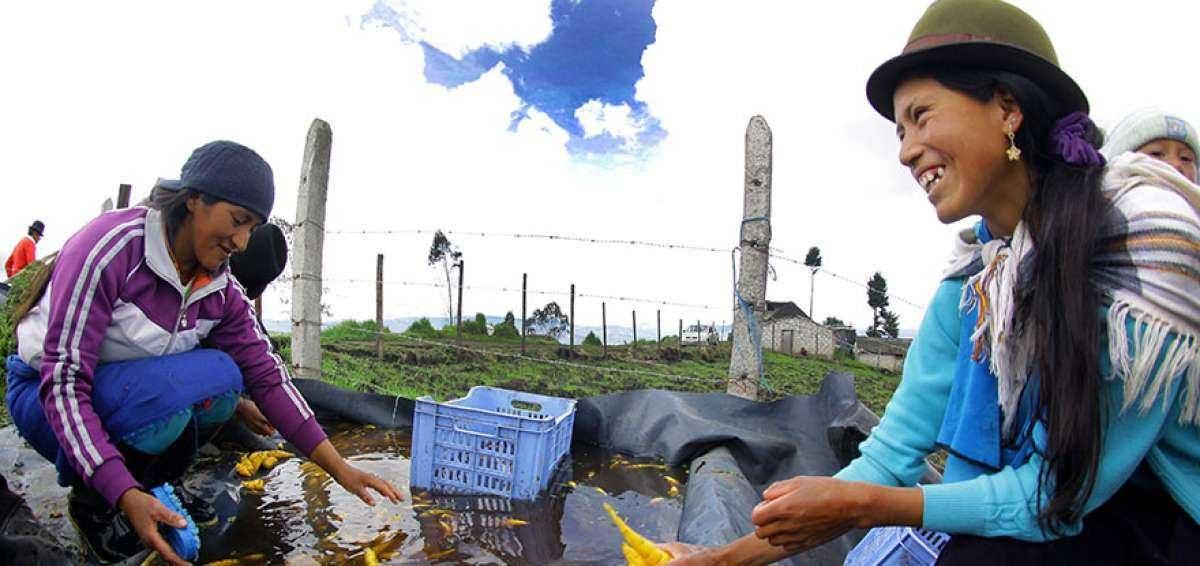 """Ecuador se suma a la campaña regional """"Mujeres rurales, mujeres con derechos"""""""