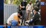 VIDEO| Rescatan 3 cocodrilos en peligro de extinción en Guayaquil