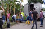 VIDEO | Riña de trabajadores de una bananera dejó un fallecido en El Guabo, provincia de El Oro