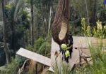 VIDEO | Una mujer falleció tras golpearse la cabeza y caer a un precipicio en un lugar turístico en la provincia de Pastaza