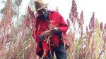 El Ministerio de Agricultura prepara la Semana de la Quinua