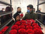 Firma española comercializará flores preservadas de Cotopaxi