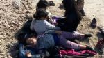 Granjero encuentra en Texas a cinco niñas migrantes abandonadas y hambrientas