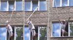 VIDEO: El angustioso pero exitoso rescate de un gato atorado en una ventana