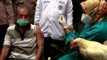 Gallinas para quienes se vacunen contra el Covid-19 en Indonesia