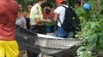 VIDEO  Sicarios mataron a un hombre mientras descansaba en una hamaca