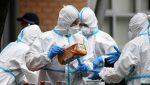 Ecuador cerca de entrar a la fase 4 de la pandemia