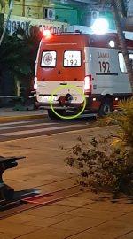VIDEO | Can se subió al parachoques de una ambulancia para acompañar a su dueño