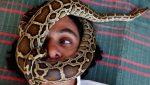 FOTO: Un hombre lleva una serpiente en el cuello en vez de una mascarilla para cubrir la cara en un autobús